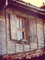 The window by kridi