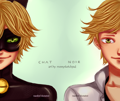 two identities, only one - Miraculous ladybug by IAMeikoD