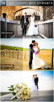 Wedding Pro Presets by Cata05