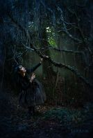 Enchanted forest by LilifIlane