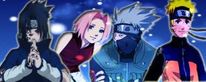 Team 7 Signature by L-luvs-cake