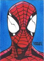 Amazing Spider-Man Sketchcard by dtor91