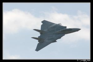 F-14 V.2 by Pilots