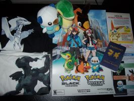 Pokemon Black and White Swag by DirtySweetRazz