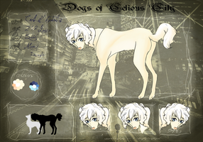 DoCC : Cecil IV Fedoralis by Laurel3aby