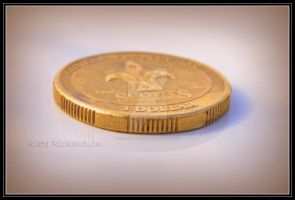 dollar coin by DesignKReations