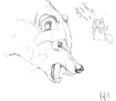 Growl Sketch by nightspiritwing