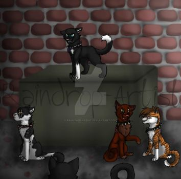 We are Bloodclan by Raindrop-Artist