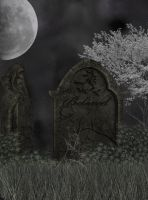 Premade Background  1395 by AshenSorrow
