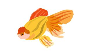 Another Goldfish Vector Image by theseventhshadow
