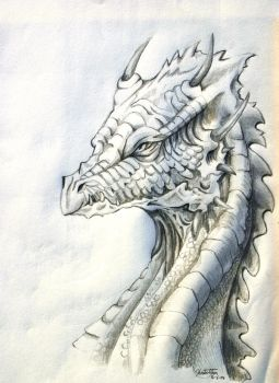 .:Dragon:. by RandomBlah