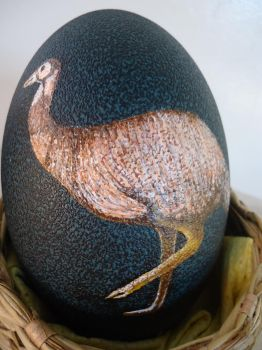 Right Emu Egg Detail by dinoloverXX
