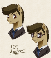 Tenth Doctor Whooves by hikariviny