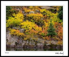 Fall Colors 2008 by kennedmh