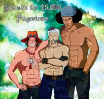Thanks for 25,000 Pageviews by DarkAngelxVegeta