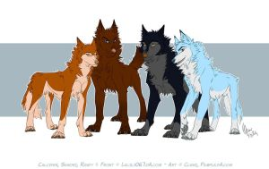 The pack by Pample