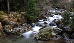 White waters by IohanPhotography