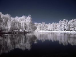 Infrared Lake by dantudose