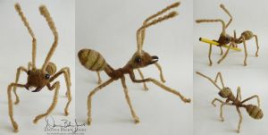 Weaver Ant by FamiliarOddlings