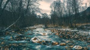 Late-autumn4 by giancoli