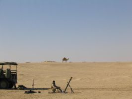 The camel on patrol by SteelClaw