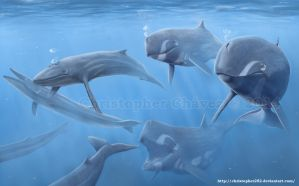 Ballenas asesinas by Christopher252