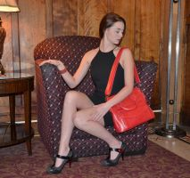 The Red Purse by Fathergatto