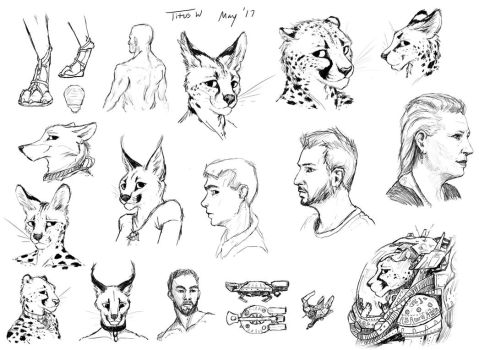 Sketches 5/13/17 by TitusW