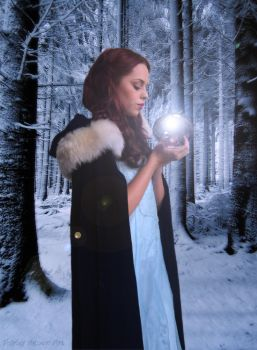 Winter Magic ~ For Robert by Shirley-Agnew-Art