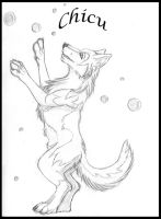 Chicu and soap bubbles by Mutabi