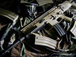 Classic Army FN SCAR L by Viper818