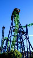 RollerCoster by AWildRose