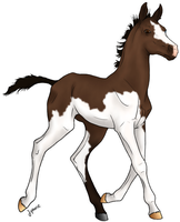 Foal Adopt 1: Sold by Sassykatt1