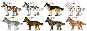 Pup Adopts- DA Point Sale by ChasingDreams4