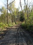 sci-stock - dirt road by sci-fi-stock