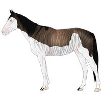 Mare adopt 12 CLOSED by petshop101