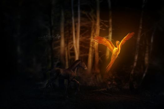 song of the lightbringer by purpledaydreams