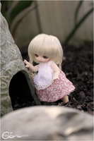 BJD: Anyone home? by cindre