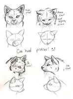 Cat Head Views by CrossHound213