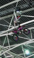 Fmx4 by MetallerLucy