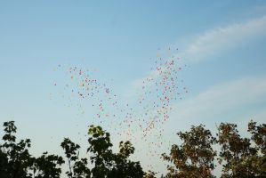 Balloons in the sky 1 by steppelandstock
