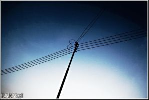Silhouette of Electrical Post. by Flanegan