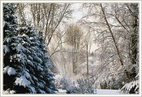 At Last Snow 2 by denise-g