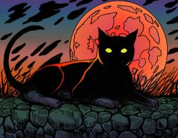 Black Cat - Color by hertubise