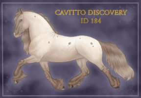 Cavitto Discovery ID 184 by Cariannarz