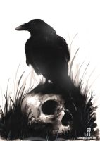 Inkwash Skull and Bird by cbernhardt