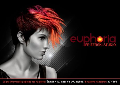 Euphoria Hair Studio_Poster by Melica75
