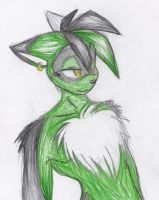 .:Seether:. by 12TheDarkWolf21
