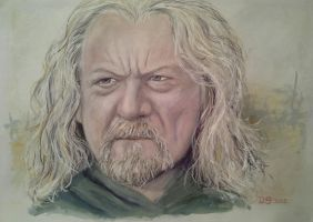 King Theoden by acrylicwildlife
