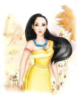 Pocahontas From Disney by areemus
